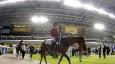 The Meydan issues challenge to Dubai brunch scene