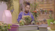 Sustainable farming promoted in National Geographic Kids Abu Dhabi TV show