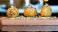 Limited edition truffle menu at Gordon Ramsay's Bread Street Kitchen
