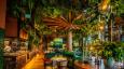 Spotlight: Jungle-themed fun at Amazonico Dubai