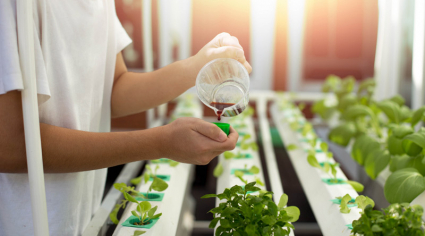 FoodTech Challenge announces 12 finalists of $1m competition