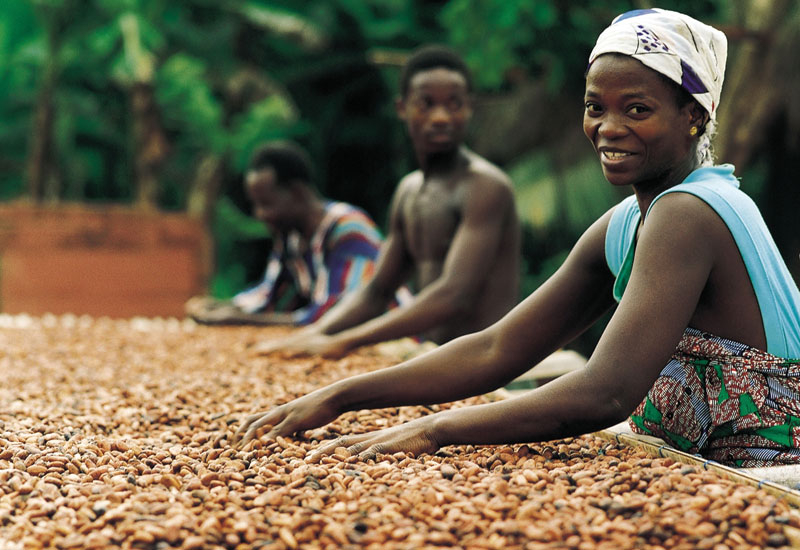 Sun-drying cocoa beans. [Barry Callabaut]