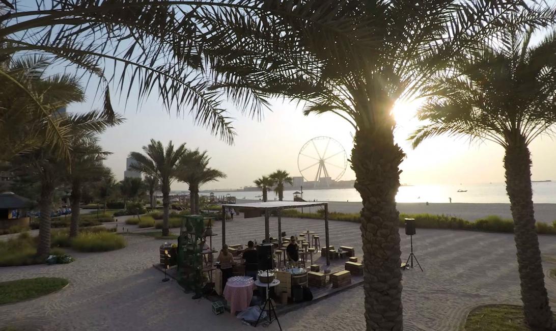 Oysters, Shellfish, Fujairah, Dibba bay