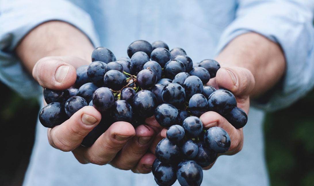 Cso, Fruits, Veg, Italy, Eu