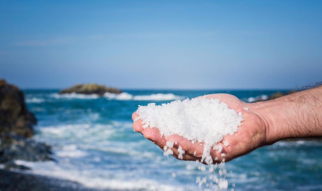 Cornish sea salt, Bidfood uae, Supplier, Foodservice